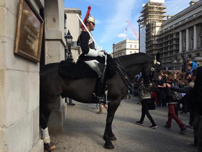 London Thilde hest